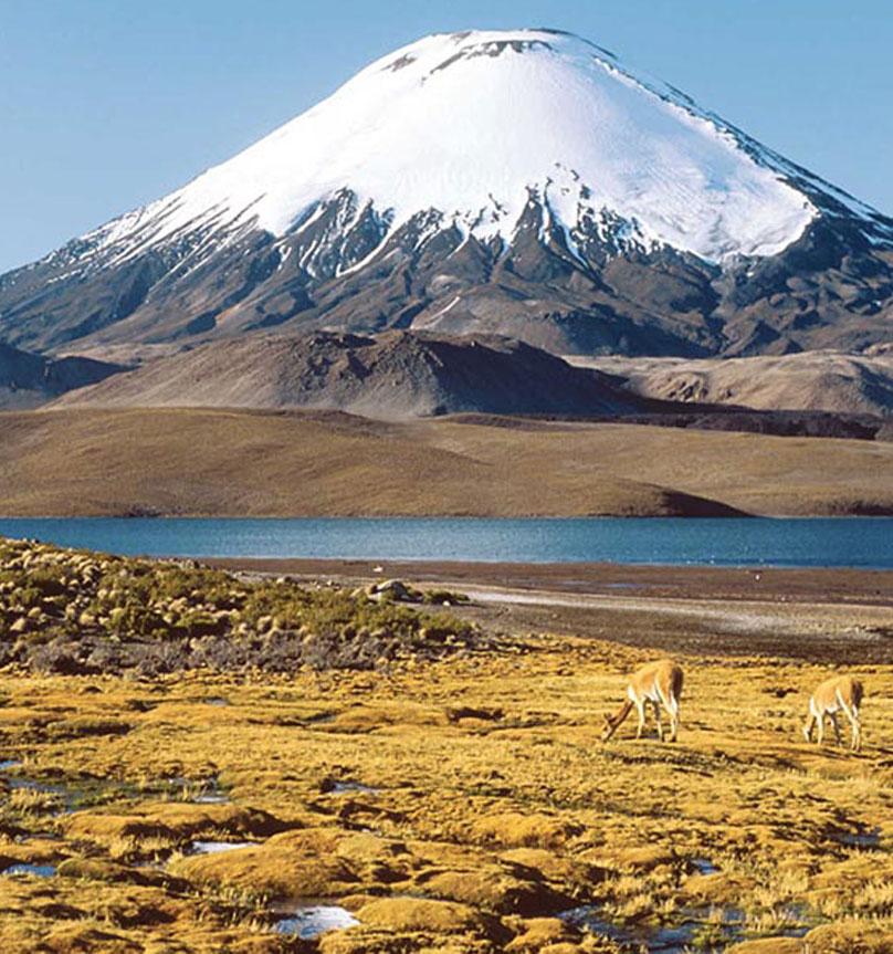 Réveillon Chile